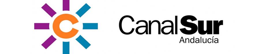 Logo canal sur - Taller Telekids